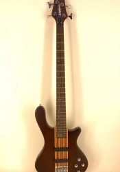 Washburn Bass