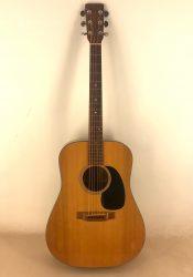 Martin D-18 – 1976